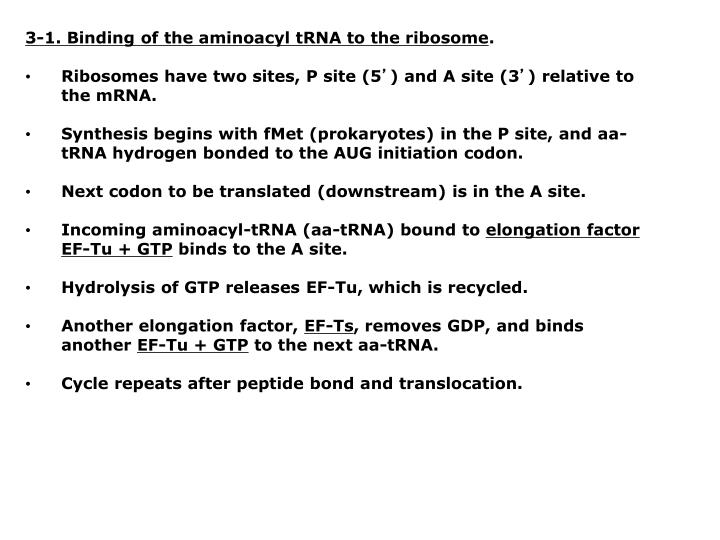 3-1. Binding of the aminoacyl tRNA to the ribosome