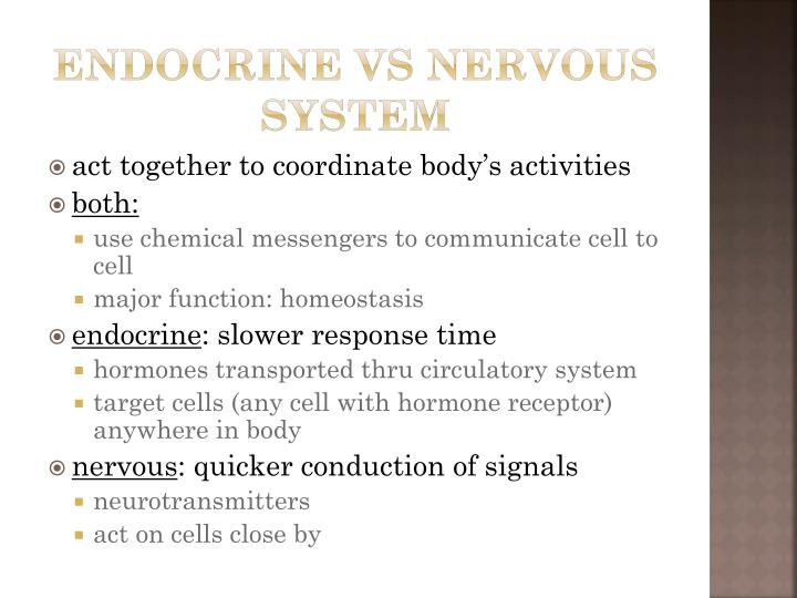 Endocrine vs nervous system