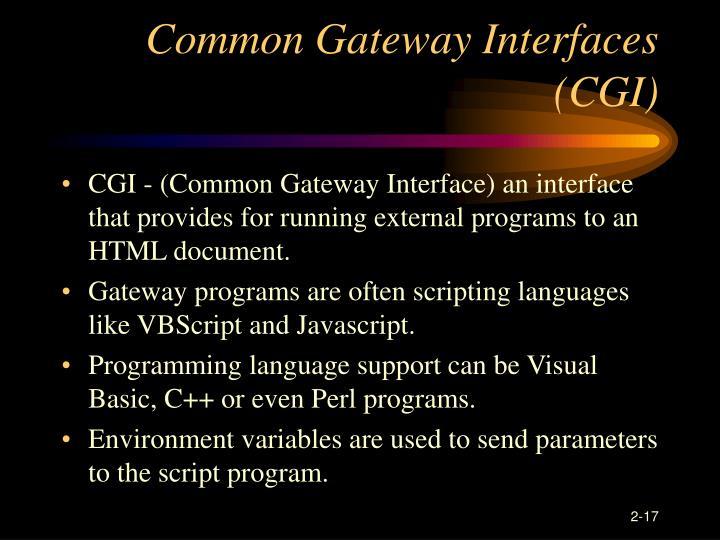 Common Gateway Interfaces (CGI)