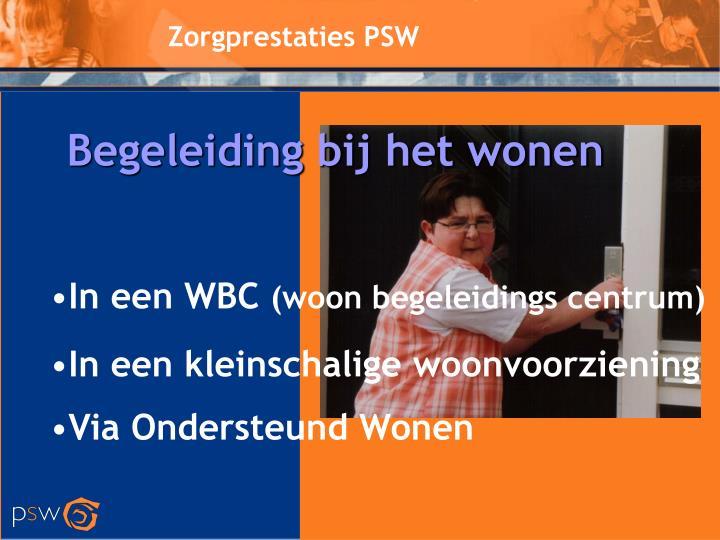Zorgprestaties PSW
