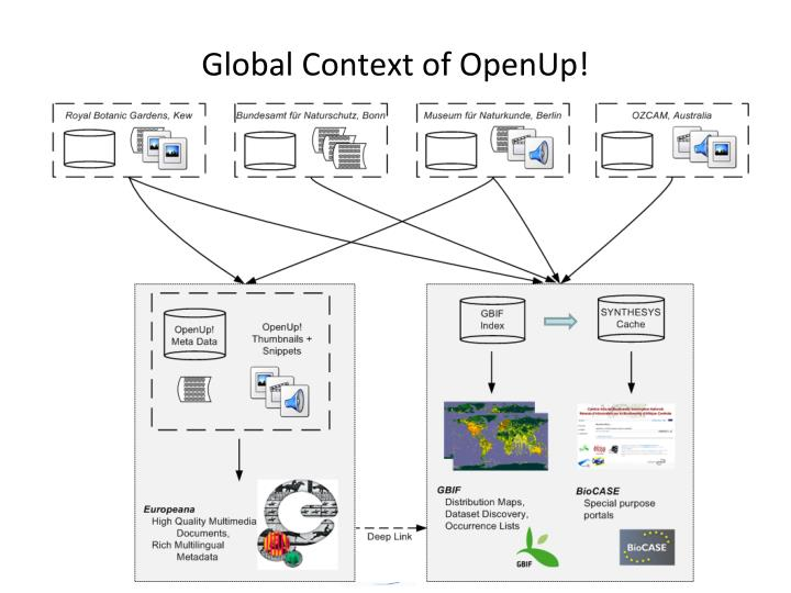Global Context of OpenUp!