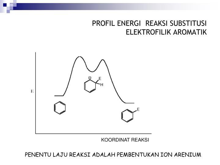 PROFIL ENERGI  REAKSI SUBSTITUSI