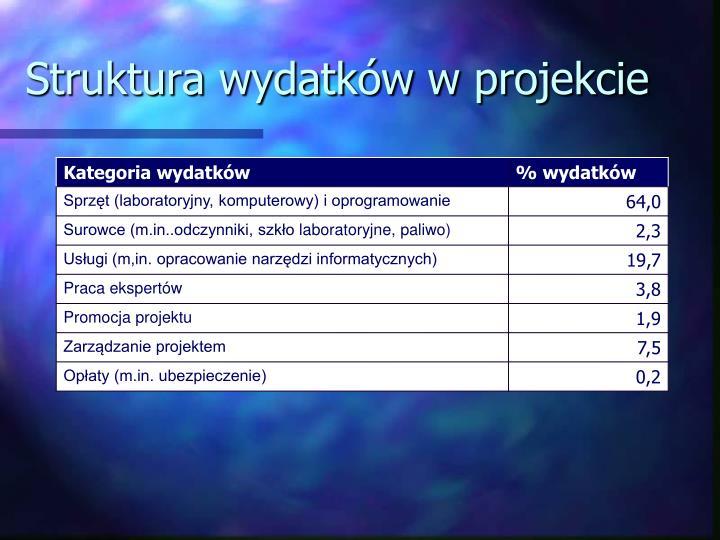 Struktura wydatków w projekcie