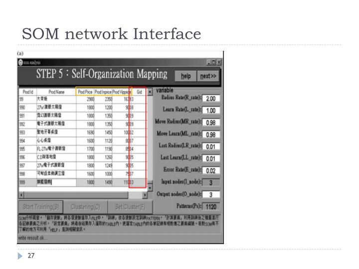SOM network Interface