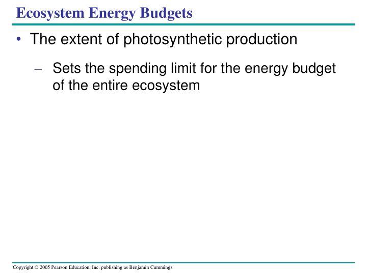 Ecosystem Energy Budgets