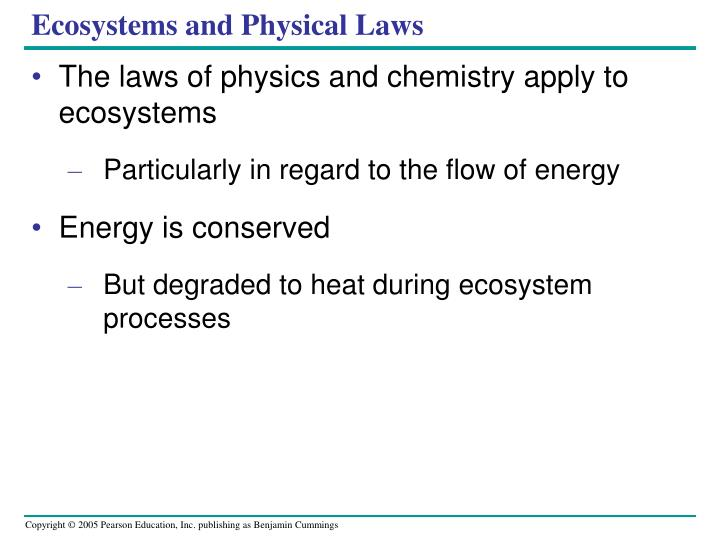Ecosystems and Physical Laws