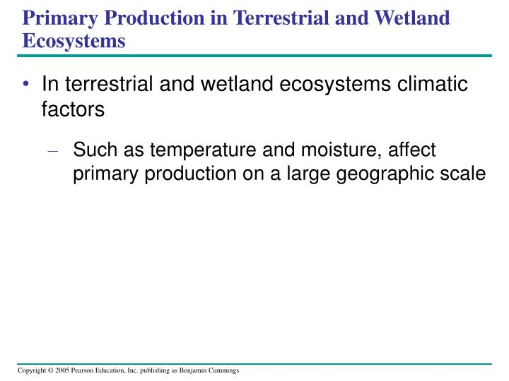 Primary Production in Terrestrial and Wetland Ecosystems