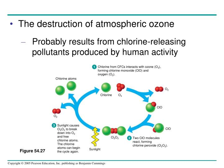 Chlorine from CFCs interacts with ozone (O