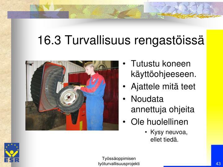 16.3 Turvallisuus rengastöissä