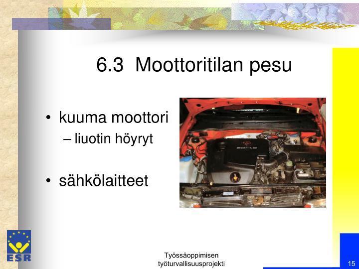 6.3  Moottoritilan pesu