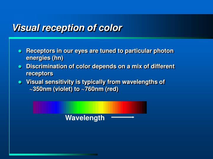 Visual reception of color