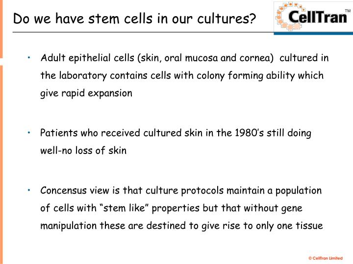 Do we have stem cells in our cultures?