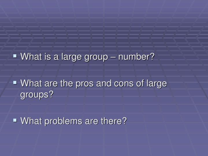 What is a large group – number?