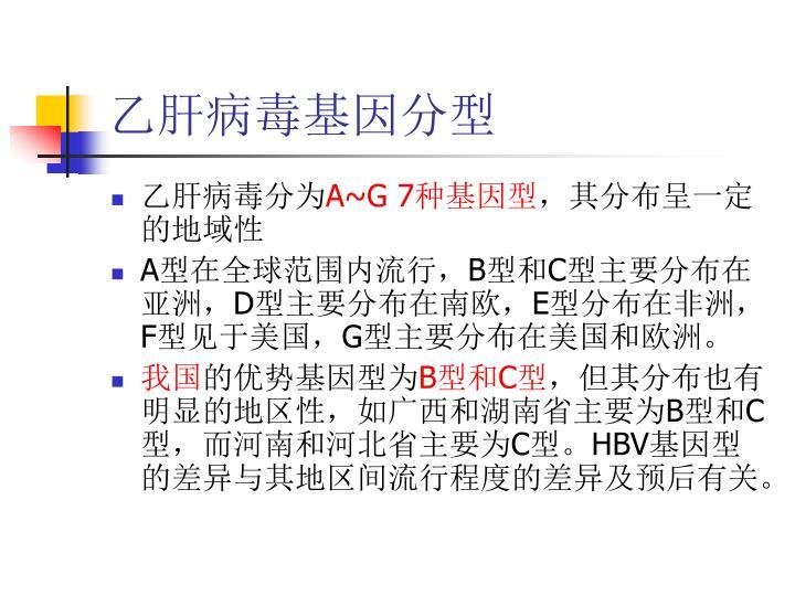 乙肝病毒基因分型
