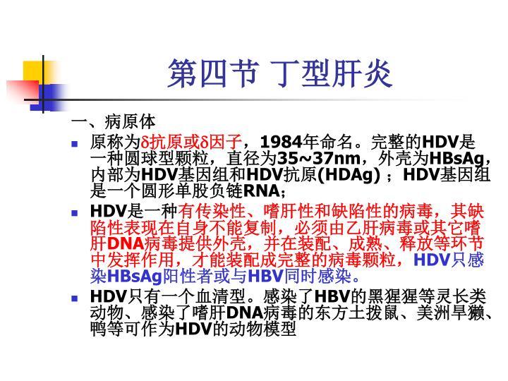 第四节 丁型肝炎