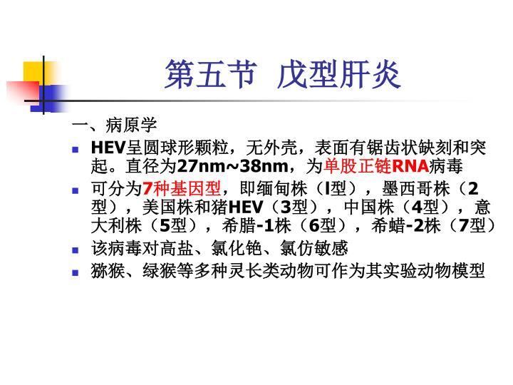 第五节  戊型肝炎