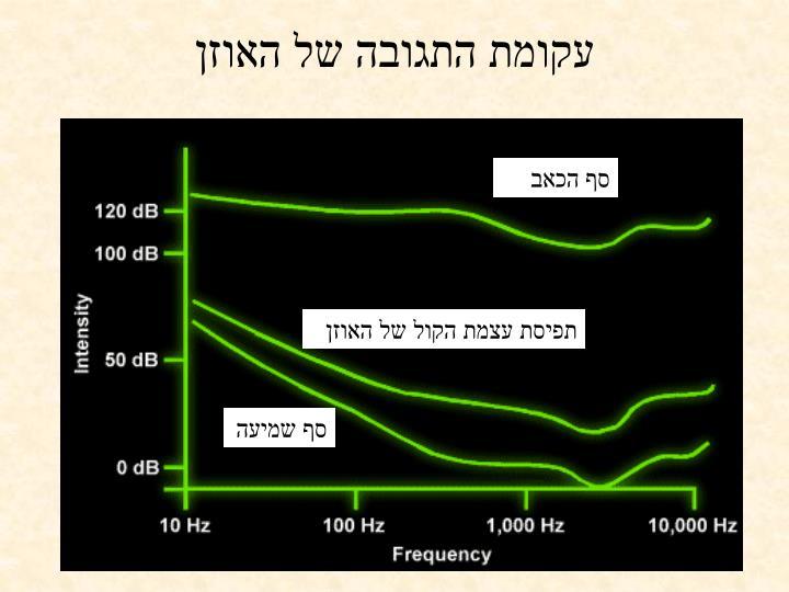 עקומת התגובה של האוזן
