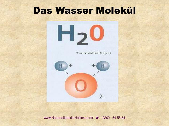 Das Wasser Molekül