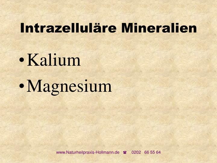 Intrazelluläre Mineralien