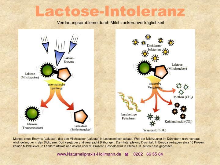 Lactose-Intoleranz
