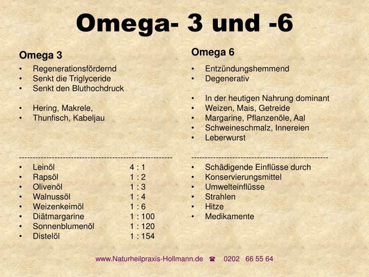Omega- 3 und -6