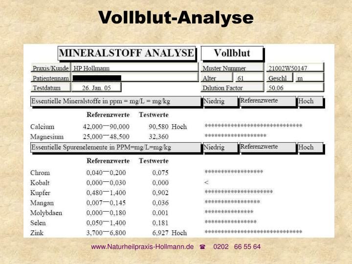Vollblut-Analyse