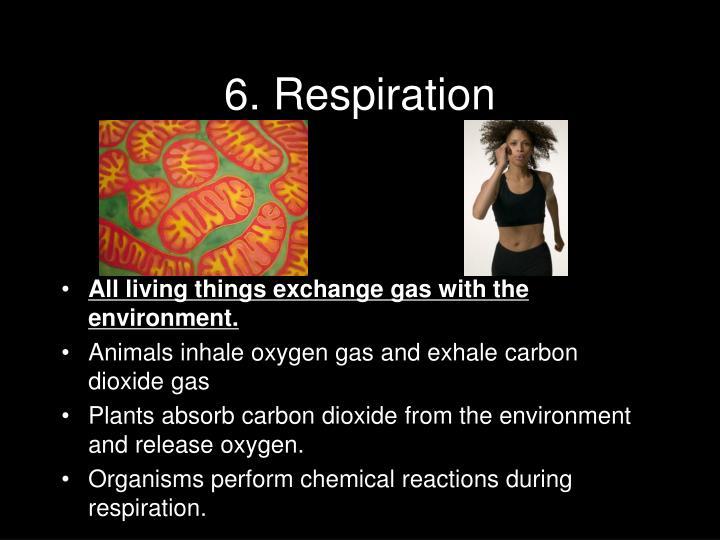 6. Respiration