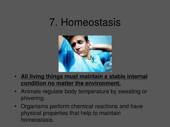 7. Homeostasis