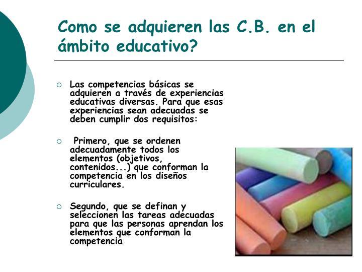 Las competencias básicas se adquieren a través de experiencias educativas diversas. Para que esas experiencias sean adecuadas se deben cumplir dos requisitos: