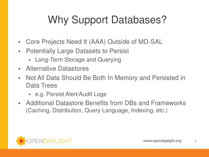 Why support databases