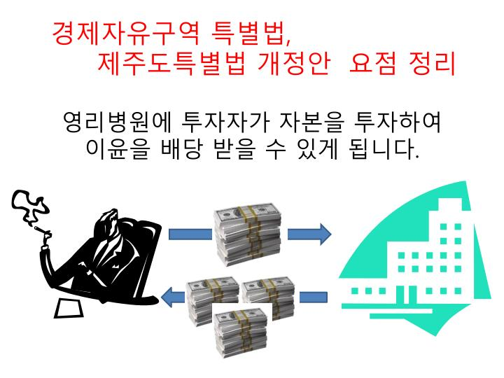 경제자유구역 특별법