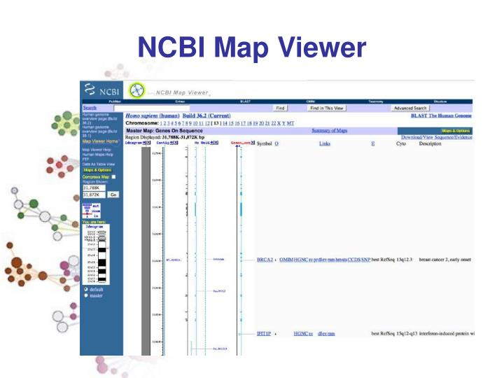 NCBI Map Viewer