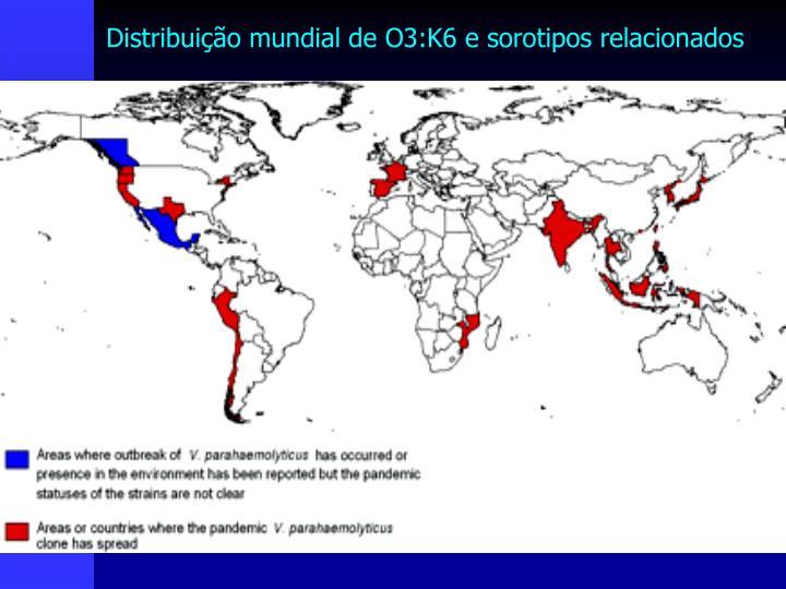 Distribuição mundial de O3:K6 e sorotipos relacionados