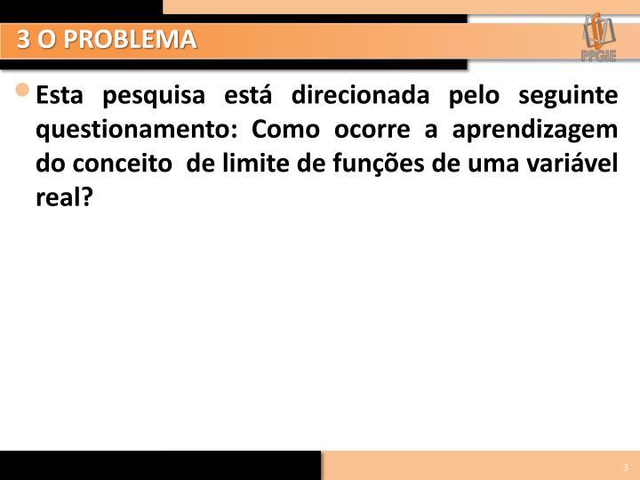 3 O PROBLEMA