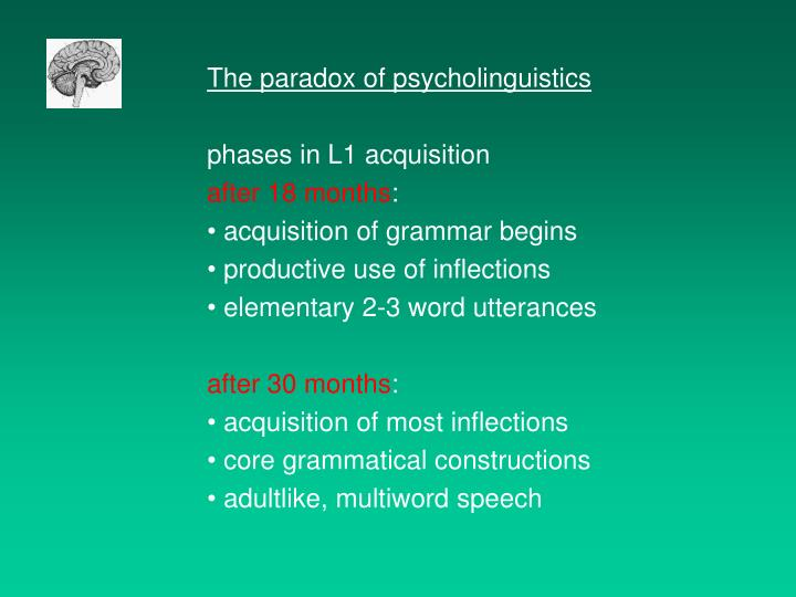 The paradox of psycholinguistics