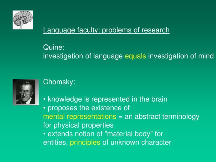 Language faculty: problems of research
