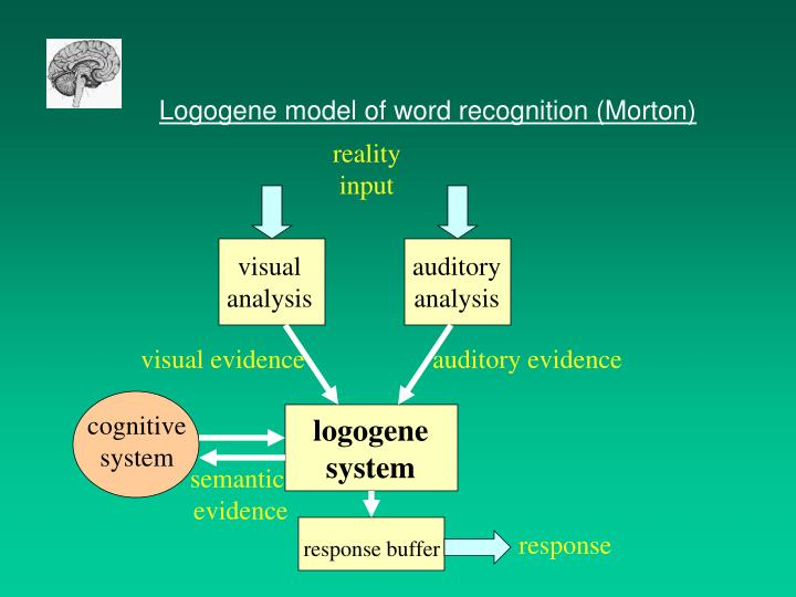 Logogene model of word recognition (Morton)