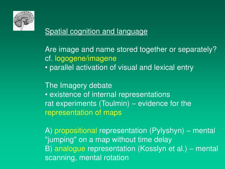 Spatial cognition and language