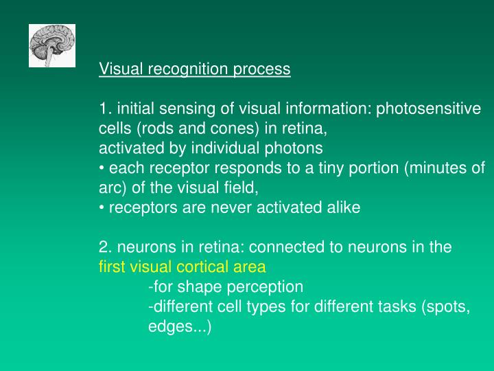 Visual recognition process