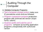 auditing through the computer2