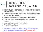 risks of the it environment sas 94