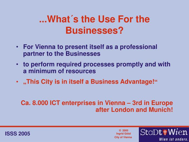 ...What´s the Use For the Businesses?