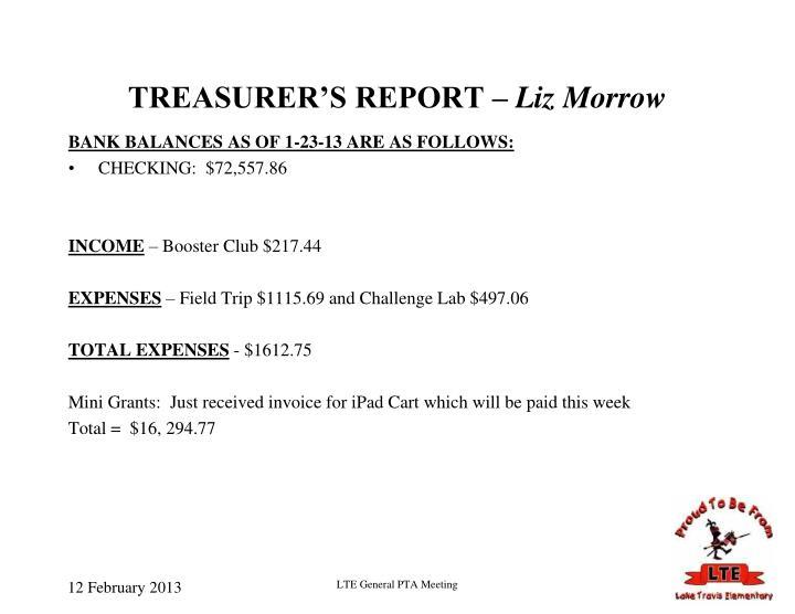 TREASURER'S REPORT –