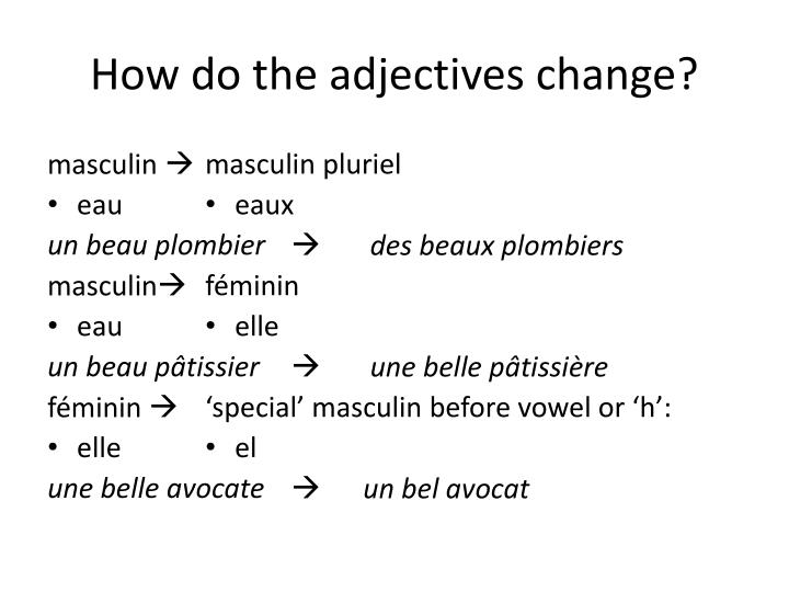 How do the adjectives change?