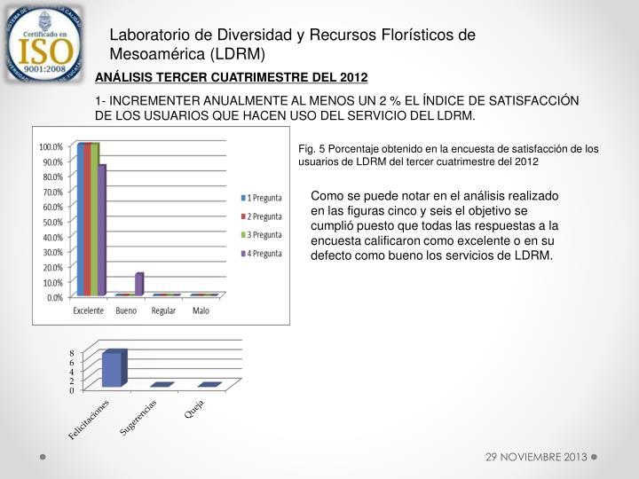 Laboratorio de Diversidad y Recursos Florísticos de Mesoamérica (LDRM)