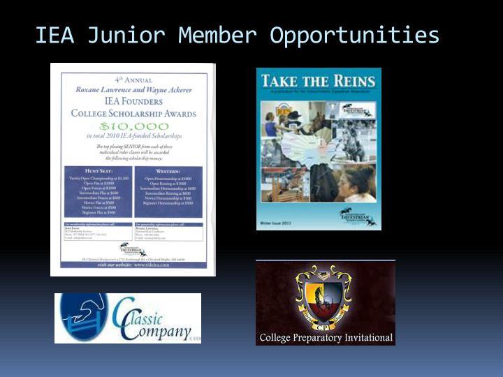 IEA Junior Member Opportunities