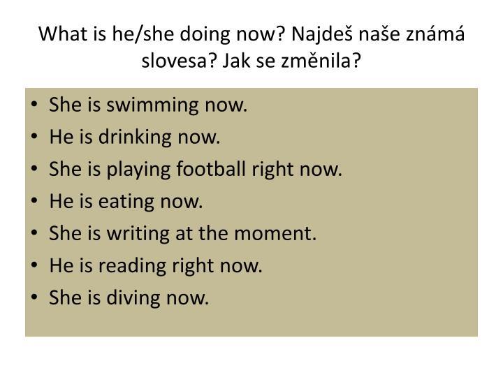 What is he/she doing now? Najdeš naše známá slovesa? Jak se změnila?