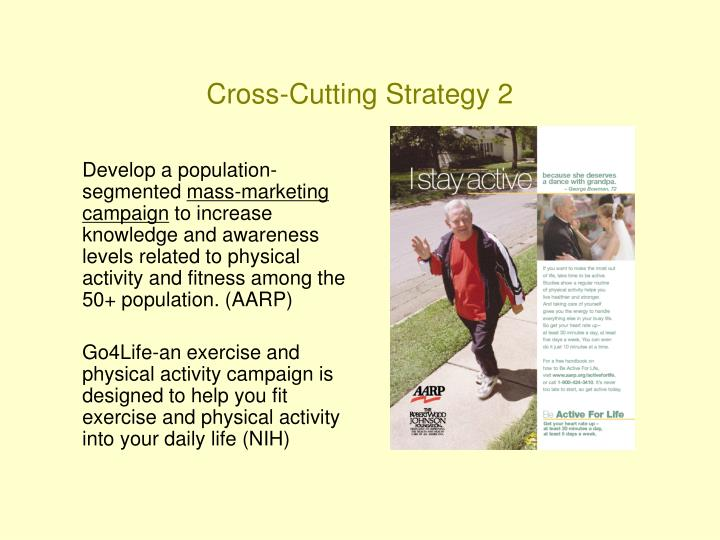 Cross-Cutting Strategy 2