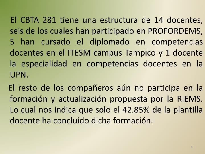 El CBTA 281 tiene una estructura de 14 docentes, seis de los cuales han participado en PROFORDEMS, 5 han cursado el diplomado en competencias docentes en el ITESM campus Tampico y 1 docente la especialidad en competencias docentes en la UPN.