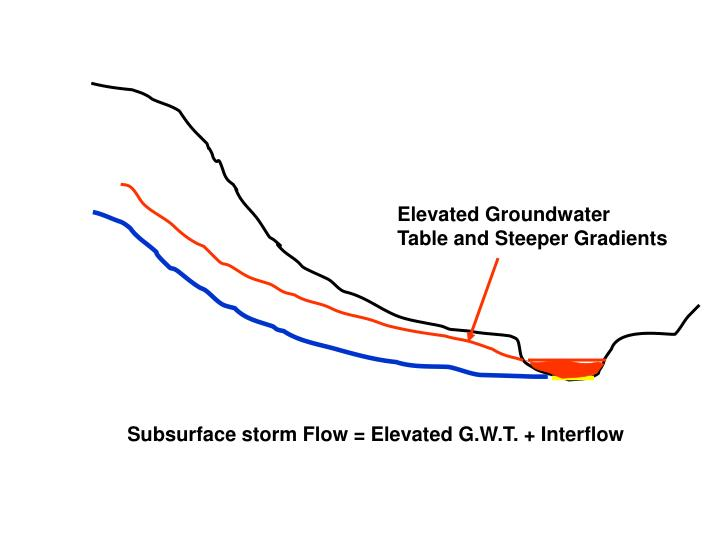 Elevated Groundwater